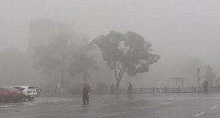 因大雾影响辽宁多地高速实行交通管制 大雾橙色预警生效中